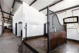 Image No.40-Maison de 12 chambres à vendre à Avis
