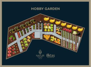 Fruit-and-Vegetable-Garden-Map