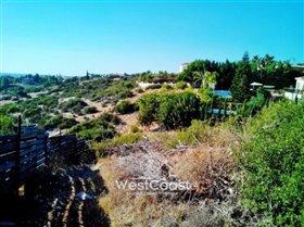 Image No.5-Terrain à vendre à Paphos