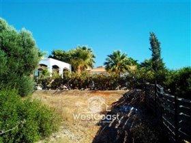 Image No.6-Terrain à vendre à Paphos