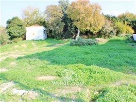 Image No.2-Terrain à vendre à Chloraka