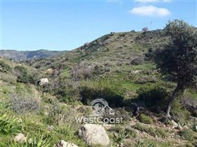Image No.1-Terre à vendre à Peyia