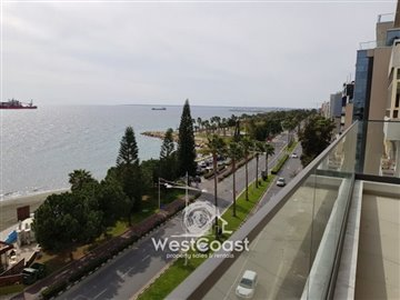 80994-apartment-for-sale-in-neapolisfull