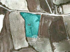Image No.8-Terre à vendre à Kathikas