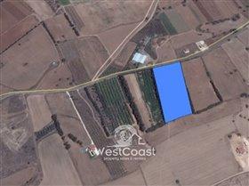 Image No.1-Terrain à vendre à Kouklia