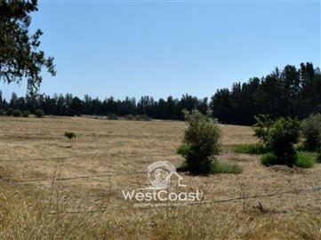 63071-investment-land-in-fassouri-area-near-n