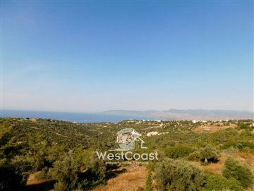 83993-bungalow-for-sale-in-neo-choriofull