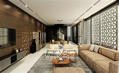 85547-penthouse-for-sale-in-dassoudifull