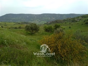 100793-residential-land-for-sale-in-choletria