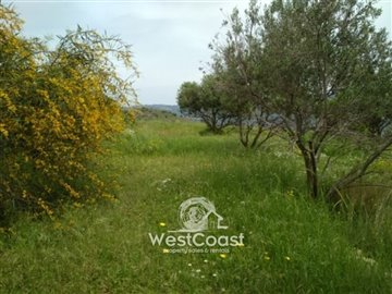100790-residential-land-for-sale-in-choletria