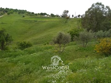 100792-residential-land-for-sale-in-choletria