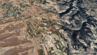 124683-agricultural-land-for-sale-in-pano-aro