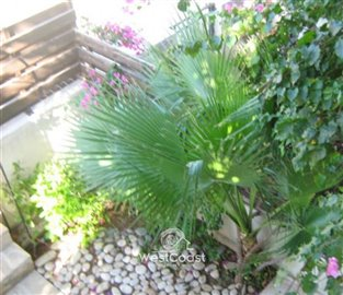 125455-town-house-for-sale-in-potamos-germaso