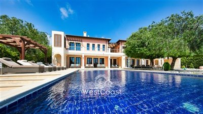 127897-detached-villa-for-sale-in-aphrodite-h