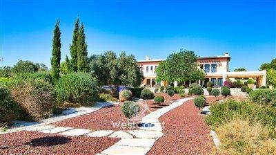 127887-detached-villa-for-sale-in-aphrodite-h