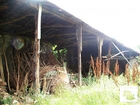 Image No.5-Maison de 3 chambres à vendre à Pavlikeni
