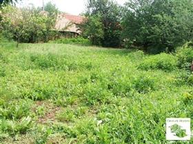 Image No.6-Maison de 3 chambres à vendre à Pavlikeni