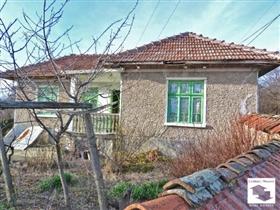 Polski Trambesh, House