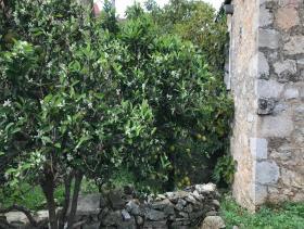 Image No.6-Maison de village de 3 chambres à vendre à Vrbanj