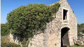 Image No.5-Maison de 3 chambres à vendre à Brusje