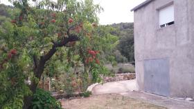 Image No.14-Maison de 3 chambres à vendre à Vrbanj