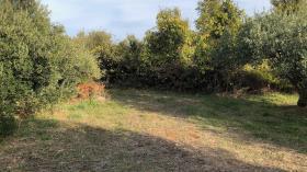 Image No.4-Terre à vendre à Dol