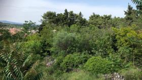 Image No.1-Terre à vendre à Stari Grad
