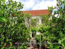 Image No.8-Maison de 4 chambres à vendre à Tivat