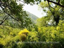 Image No.3-Terrain à vendre à Ulcinj