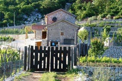 old-estate-in--Skadar-lake-6683-21-