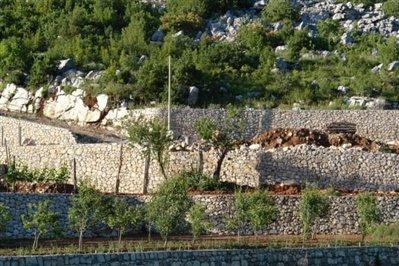 old-estate-in--Skadar-lake-6683-23-