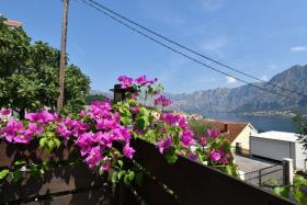 Image No.10-Maison / Villa de 4 chambres à vendre à Prcanj