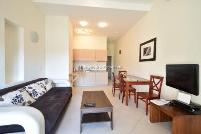 One-bedroom-apartment-with-partial-sea-views-priced-for-quick-sale--Dobrota--13116--11-