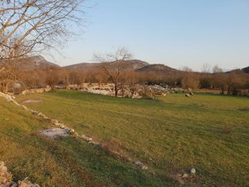 Large-plot-with-a-house-and-two-ruins-for-sale--Skadar-Lake--13171--16-_1600x1200