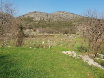 Large-plot-with-a-house-and-two-ruins-for-sale--Skadar-Lake--13171--20-_1600x1200