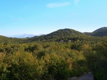 Large-plot-with-a-house-and-two-ruins-for-sale--Skadar-Lake--13171--23-_1600x1200