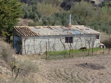 8953-land-for-sale-in-lucar-87780-large