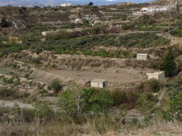 8953-land-for-sale-in-lucar-87785-large