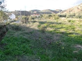 Image No.8-Terre à vendre à Albox