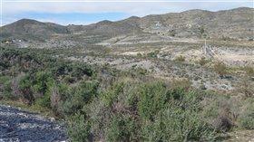 Image No.4-Terre à vendre à Almeria
