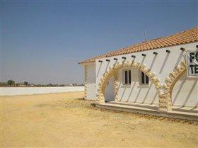 Image No.0-Bungalow de 4 chambres à vendre à Avgorou