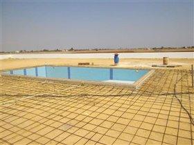 Image No.7-Bungalow de 4 chambres à vendre à Avgorou