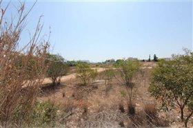 Image No.6-Terre à vendre à Ayia Napa