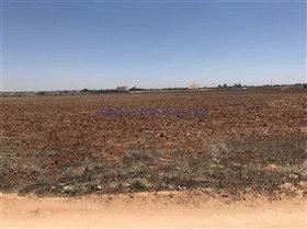 Image No.4-Terre à vendre à Avgorou