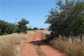 Image No.3-Terre à vendre à Avgorou