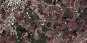Image No.5-Terre à vendre à Avgorou