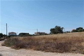 Image No.3-Terre à vendre à Deryneia