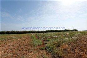 Image No.1-Terre à vendre à Ayia Triada