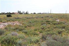 Image No.8-Terre à vendre à Protaras