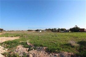 Image No.3-Terre à vendre à Ayia Thekla